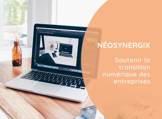 Néosynergix | Découvrir le projet
